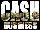 Cash Business, Marijuana — Stock Photo