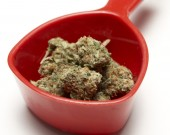 Marijuana — Stockfoto