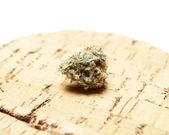 Marihuana — Stockfoto