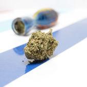 Marijuana — Stock Photo