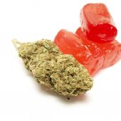 Marijuana THC Candy — Stock Photo