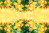 Pattern with orchids — Stock Photo