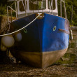 A Boat During The Low Tide — Stock Photo #56982383