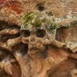 Постер, плакат: An ancient grave stone with a terrifying skull