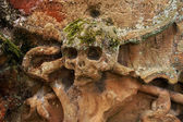 An ancient grave stone with a terrifying skull — Stock Photo