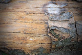Wire fence rust texture background with wood — Stock Photo