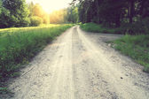 Muddy traces on the forest road — Stock Photo