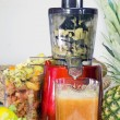 Постер, плакат: Extractor juice low rpm in working produces fresh juice without