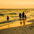 Family Walking Along Together on a Florida Beach at Sunset — Stock Photo #73871205