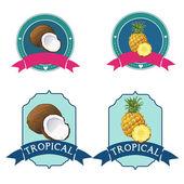 Tropical fruit logo — Stock Vector