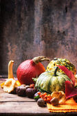 Pumpkins, nuts and berries — Stock Photo