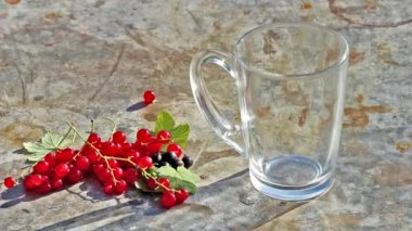 Glass cup with pouring milk and red currants berries in day light — Stock Video