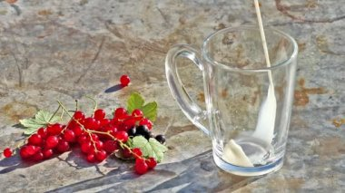 Glass cup with pouring milk and red currants berries — Stock Video