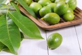 Young green walnuts — Stock Photo