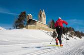 Nordic ski — Stock Photo