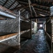 Inside of a barracks of the Nazi concentration camp Auschwitz Bi — Stock Photo #64399123