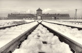 The Auschwitz-Birkenau State Museum — Stock Photo