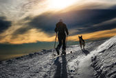 Ski mountaineering silhouette, girl with a dog  — Стоковое фото