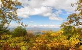 Scenic Overlook, Blue Ridge Parkway, Virginia — Stock Photo