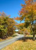 Blue Ridge Parkway, Virginia — Stock Photo