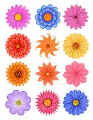 Various colorful flower — Stock Vector