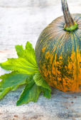 Green, yellow pumpkin with leaf on wooden background — Stock Photo