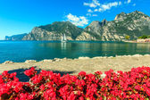 Red flowers,mountains and Lake Garda,Northern Italy,Europe — 图库照片