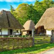 Typical peasant houses,Astra Ethnographic village museum,Sibiu,Romania,Europe — Stock Photo #55985621