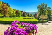 Fantastic ornamental garden and palace,Peles castle,Sinaia,Romania,Europe — Stock Photo