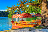 Typical wooden boats on the lake,Bled,Slovenia,Europe — Stock Photo