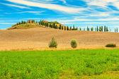 Classic Tuscany view,Siena region,Italy,Europe — Stock Photo
