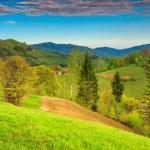 Spring landscape and farmland,Holbav,Transylvania,Romania,Europe — Stock Photo #67034457