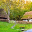 Typical peasant houses,Astra Ethnographic village museum,Sibiu,Romania,Europe — Stock Photo #68227707