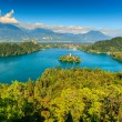 Stunning Bled Lake panorama,Slovenia,Europe — Stock Photo #69581259