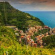 Beautiful vineyard and old town panorama of Manarola,Italy,Europe — Stock Photo #77865200