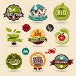 Organic and Ecology Web Icons — Stock Vector #67169737