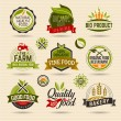 Organic and Ecology Web Icons — Stock Vector #67169747
