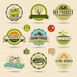 Ecology and Organic Web Icons — Stock Vector #67169749
