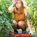 Tired of Gardening Works — Stock Photo #52474935