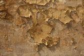 Old brick wal — Stock Photo
