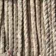 Ropes from fishing nets — Stock Photo #67935375