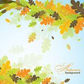 Oak autumn background, vector  — Stock Vector