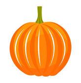 Pumpkin illustration — Stock Vector