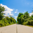 Old abandoned concrete industrial road with cracks on a sunny summer day with green trees and a blue cloudy sky — Stock Photo #54489551
