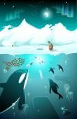 Marine underwater arctic life — Vector de stock
