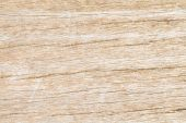 High resolution white wood plank — Stock Photo