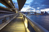 Tokyo bay and rainbow bridge — Stock Photo
