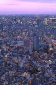 Tokyo şehir manzaralı — Stok fotoğraf