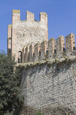Walls of castle — Stock Photo