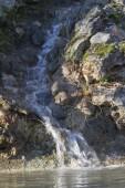Córrego da floresta — Fotografia Stock